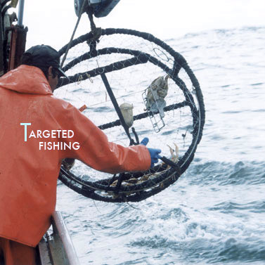 Targeted Fishing